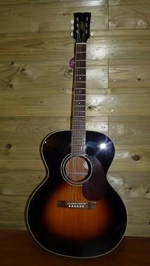 gitaar Hudson
